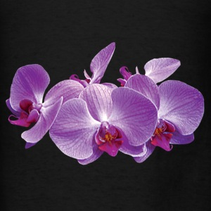 Purple Orchid Trio - Men's T-Shirt
