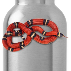 Coral snake - Water Bottle