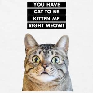 YOU HAVE CAT TO BE KITTEN ME RIGHT MEOW! Funny Cat Accessories - Men's T-Shirt