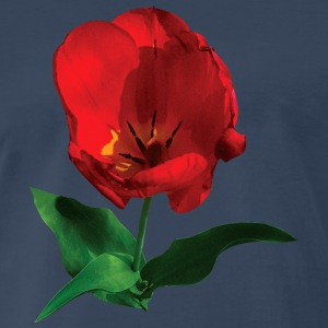 Red Tulip in Sunshine Sportswear - Men's Premium T-Shirt