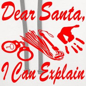 dear santa can explain essay Dear santa,i can explain, santo cielo, posso spiegare, , , translation, human translation, automatic translation.
