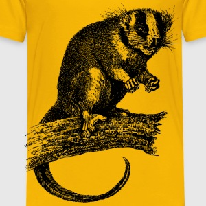Feathertailed possum - Toddler Premium T-Shirt