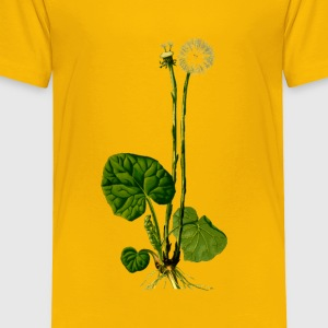 Coltsfoot (detailed) - Toddler Premium T-Shirt