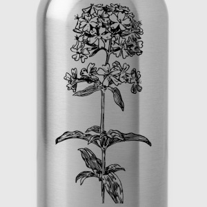 Soapwort - Water Bottle