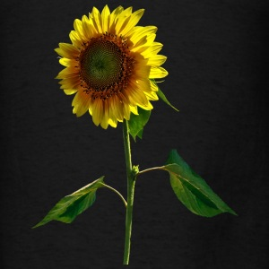 Sunflower Standing Tall Hoodies - Men's T-Shirt