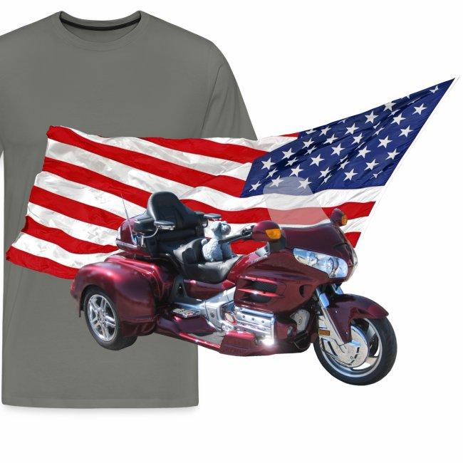 Patriotic Trike