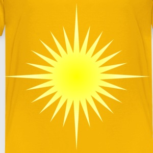 Blazing sun 6 - Toddler Premium T-Shirt