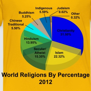 World Religions Percentages - Toddler Premium T-Shirt