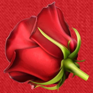 Bud of a red rose 2 - Tote Bag