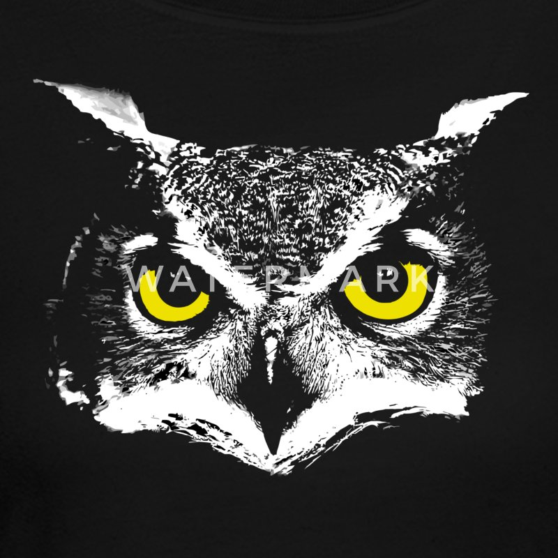 Owl Head Long Sleeve Shirts - Women's Long Sleeve Jersey T-Shirt