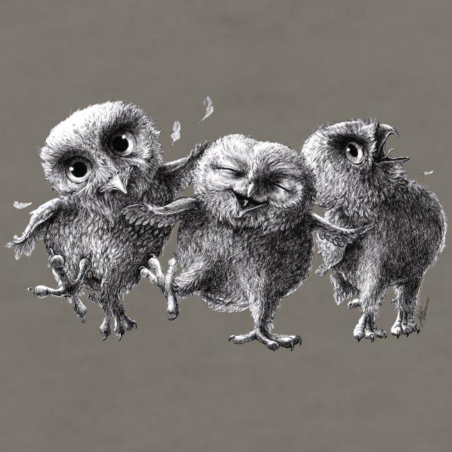 Three Crazy Owls