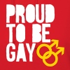 Proud to be gay Hoodies - Women's Hoodie