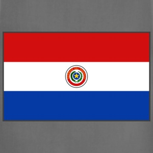 Paraguay Flag Sweatshirt - Adjustable Apron