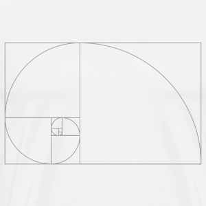 Fibonacci_Blocks - Men's Premium T-Shirt