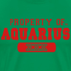 PROPERTY OF AQUARIUS Hoodies - Men's Premium T-Shirt