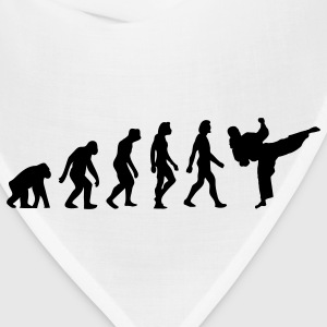 Evolution Taekwondo (1c) T-Shirts - Bandana
