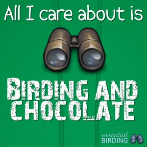 All I Care About is Birding & Chocolate - Men's Hoodie