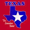 Texas, The Lonestar State womens vintage T - Women's Premium T-Shirt