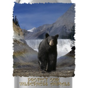 Black Bear & Waterfall - Water Bottle