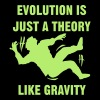 Evolution is just a theory. Like gravity. T-Shirts - Men's Premium T-Shirt