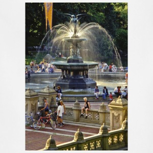 Bethesda Fountain, Central Park, New York - Adjustable Apron