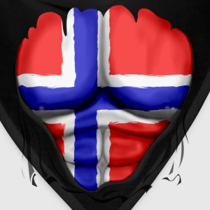 Norway Flag Ripped Muscles, six pack, chest t-shirt - Bandana