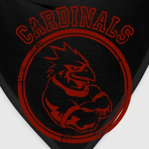 Custom Cardinals Team Graphic Mascot Hoodies - Bandana