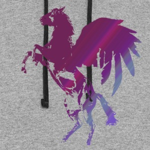 Aerial Appaloosa - Winged Horse - Colorblock Hoodie