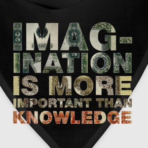 Imagination Is More Important Than Knowledge Tee - Bandana