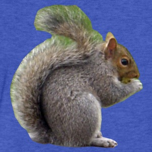 Squirrel Sweatshirts - Fitted Cotton/Poly T-Shirt by Next Level