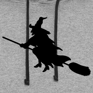 Gray witch broom Tees (Long sleeve) - Colorblock Hoodie