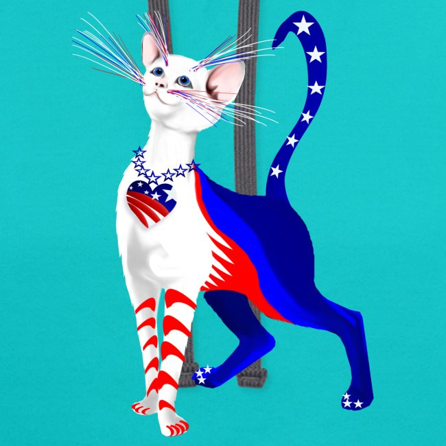 An All American Cat
