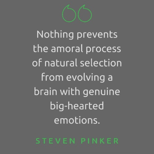 T Shirt Quote Nothing prevents Steven Pinker - Unisex Contrast Hoodie