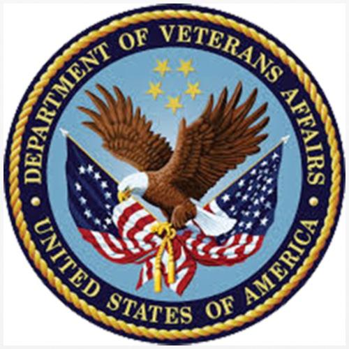 U.S. Department of Veterans Affairs - iPhone 6/6s Rubber Case