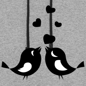 Love Birds - Colorblock Hoodie
