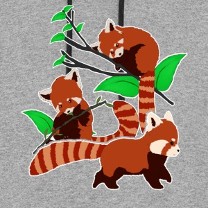 Red Panda Tee Shirt - Colorblock Hoodie