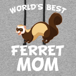 World's Best Ferret Mom Cool Ferret Owner - Colorblock Hoodie