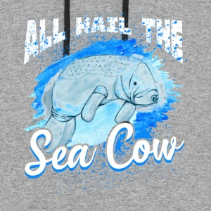 SEA COW SHIRTS - Colorblock Hoodie