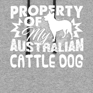 PROPERTY OF MY AUSTRALIAN CATTLE DOG SHIRT - Colorblock Hoodie