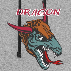 dragon_with_bull_horn_color - Colorblock Hoodie