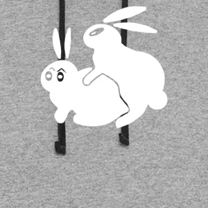 Rude Rabbits Humping - Colorblock Hoodie