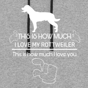 Cool Rottweiler designs - Colorblock Hoodie