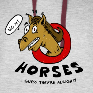 Horses Are Alright, I Guess - Colorblock Hoodie