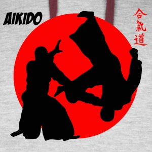 Aikodo Japanese Martial Arts Shirt - Colorblock Hoodie