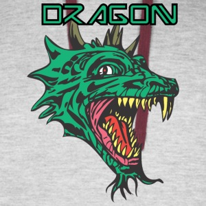dragon_with_beard_color - Colorblock Hoodie