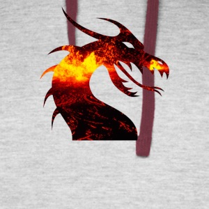 dragon on fire - Colorblock Hoodie