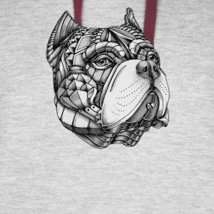Ornate American Bully - Colorblock Hoodie