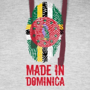 Made In Dominica - Colorblock Hoodie
