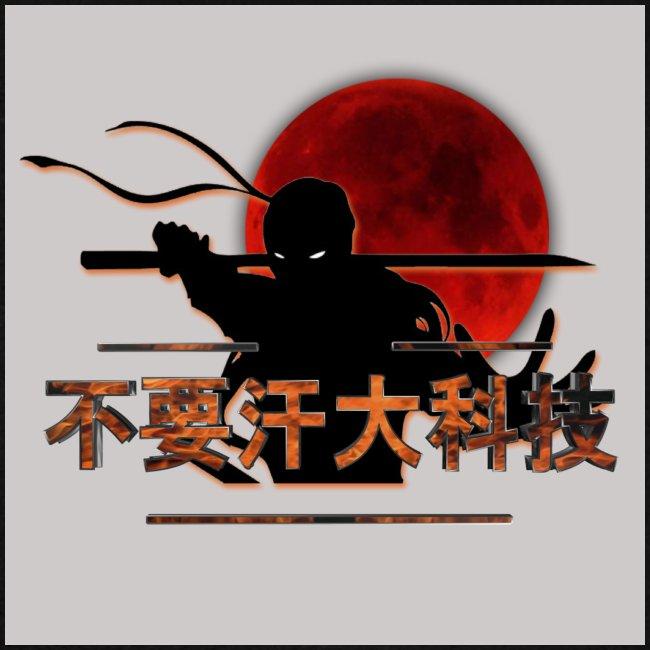 2017 dswt logo