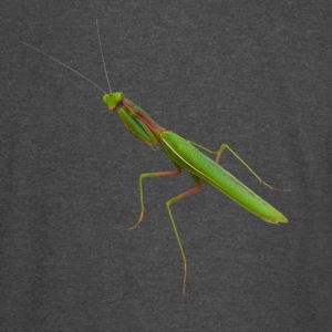 Praying Mantis - Vintage Sport T-Shirt